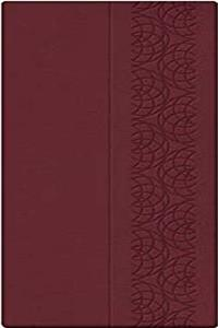Holy Bible: King James Version, Burgundy, Leathersoft, Checkbook (Classic Series) download ebook