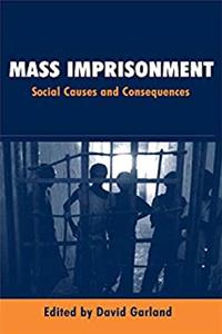 Mass Imprisonment: Social Causes and Consequences download ebook